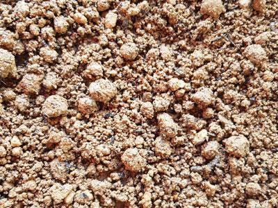 screening-soil-minus_10m_sand_plus_20_GO_Compost